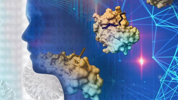 Coronavirus Deranges the Immune System in Complex & Deadly Ways