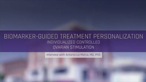 Biomarker-Guided Treatment Personalization: Individualized Controlled Ovarian Stimulation