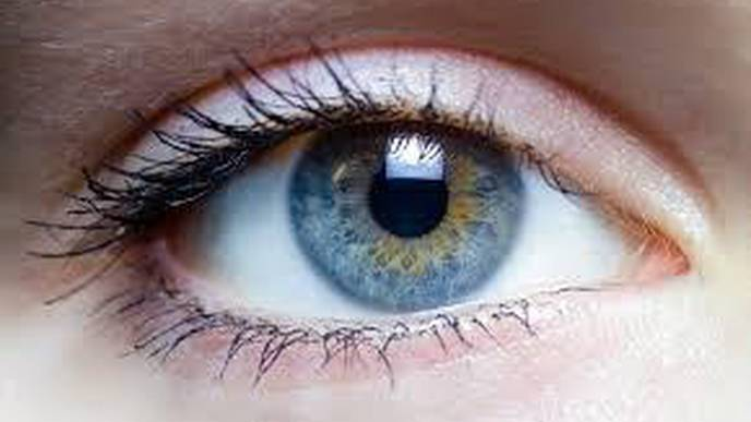 Surgery Restores Eye Muscle Function to Patients with Facial Paralysis