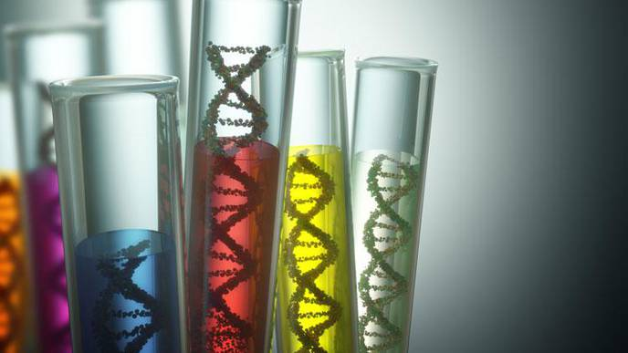 New Test for Rare Disease Identifies Children Who May Benefit from Simple Supplement