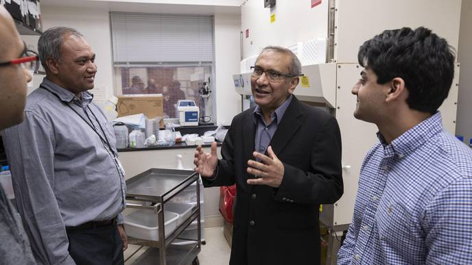 Researchers Find Way to Improve Cancer Outcomes by Examining Patients' Genes